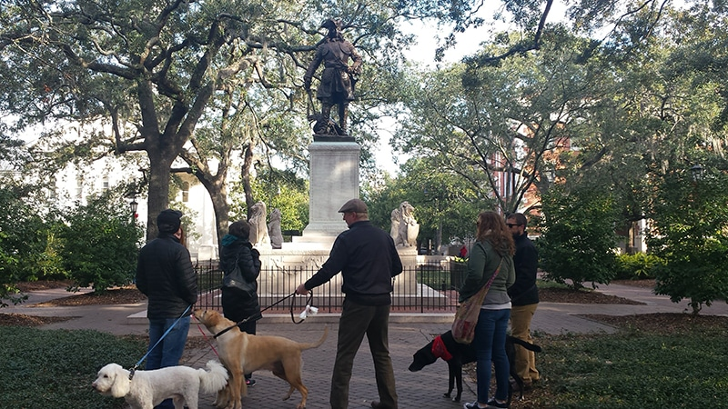 take your dog on the perfect date around savannah