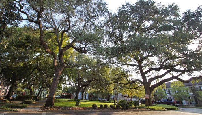 Greene Square Savannah