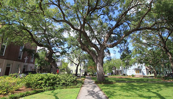 Greene Square in Savannah GA