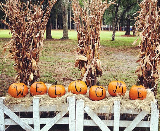 Holiday Farms Pumpkin Patch Welcome