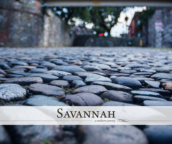 The 2016 cover of Savannah: A Southern Journey by Joey Gaston, the winner of TLC's 2015 photo contest.