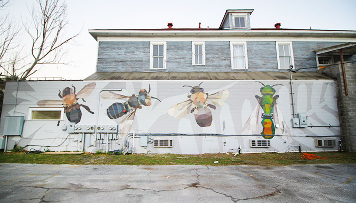 Mary Lacy Bee Mural in Savannah