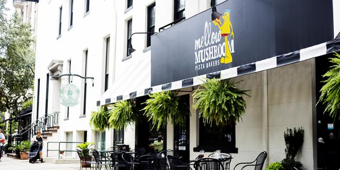 Mellow Mushroom in Savannah