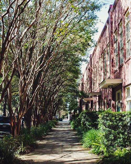 Oglethorpe Avenue 13 Secrets in Savannah