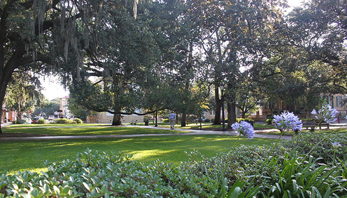 Oglethorpe Square in Savannah