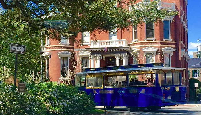 Oglethorpe Trolley Tours