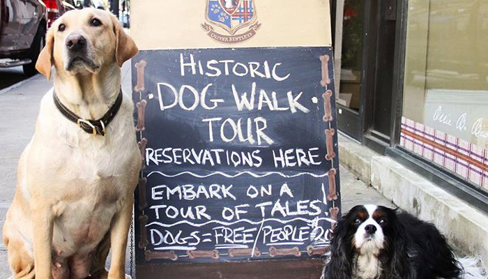 Oliver Bentleys Dog Walking Tours