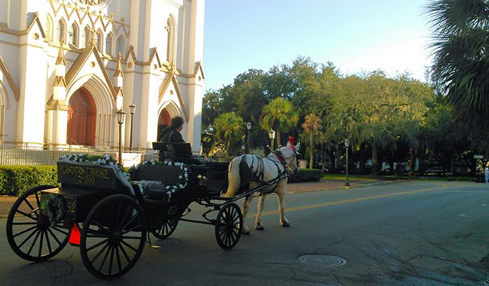 Plantation Carriage Rides in Savannah