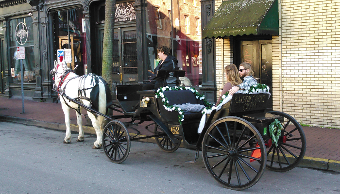 Plantation Carriage Tours in Savannah