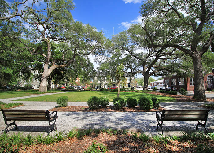 Savannah Greene Square
