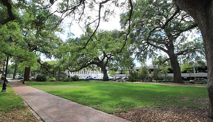 Savannah Warren Square