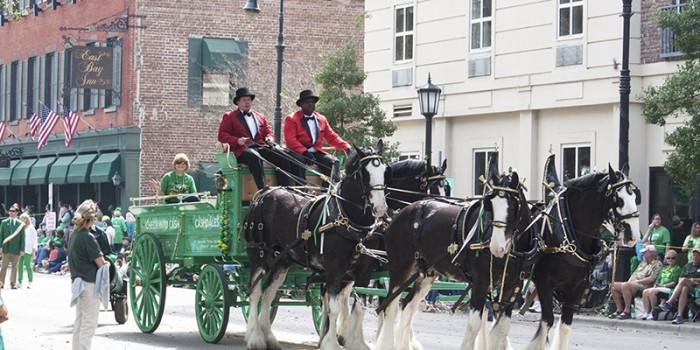 St Patrick's Day Parade Horses