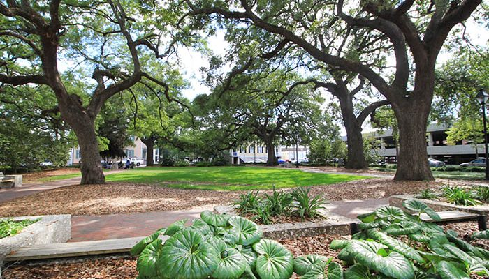 Warren Square in Savannah GA