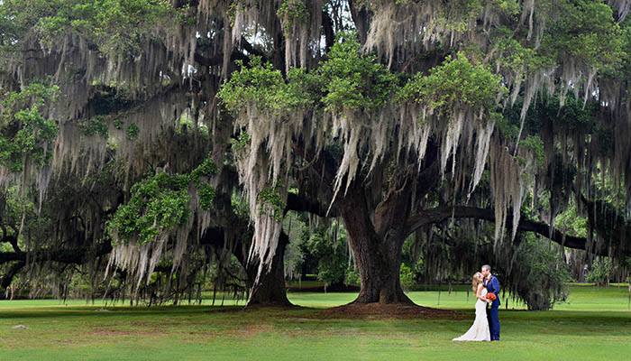 Wedding at The Ford Plantation