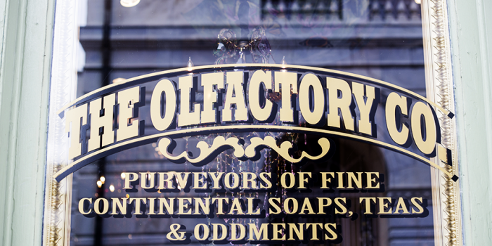 Olfactory Window