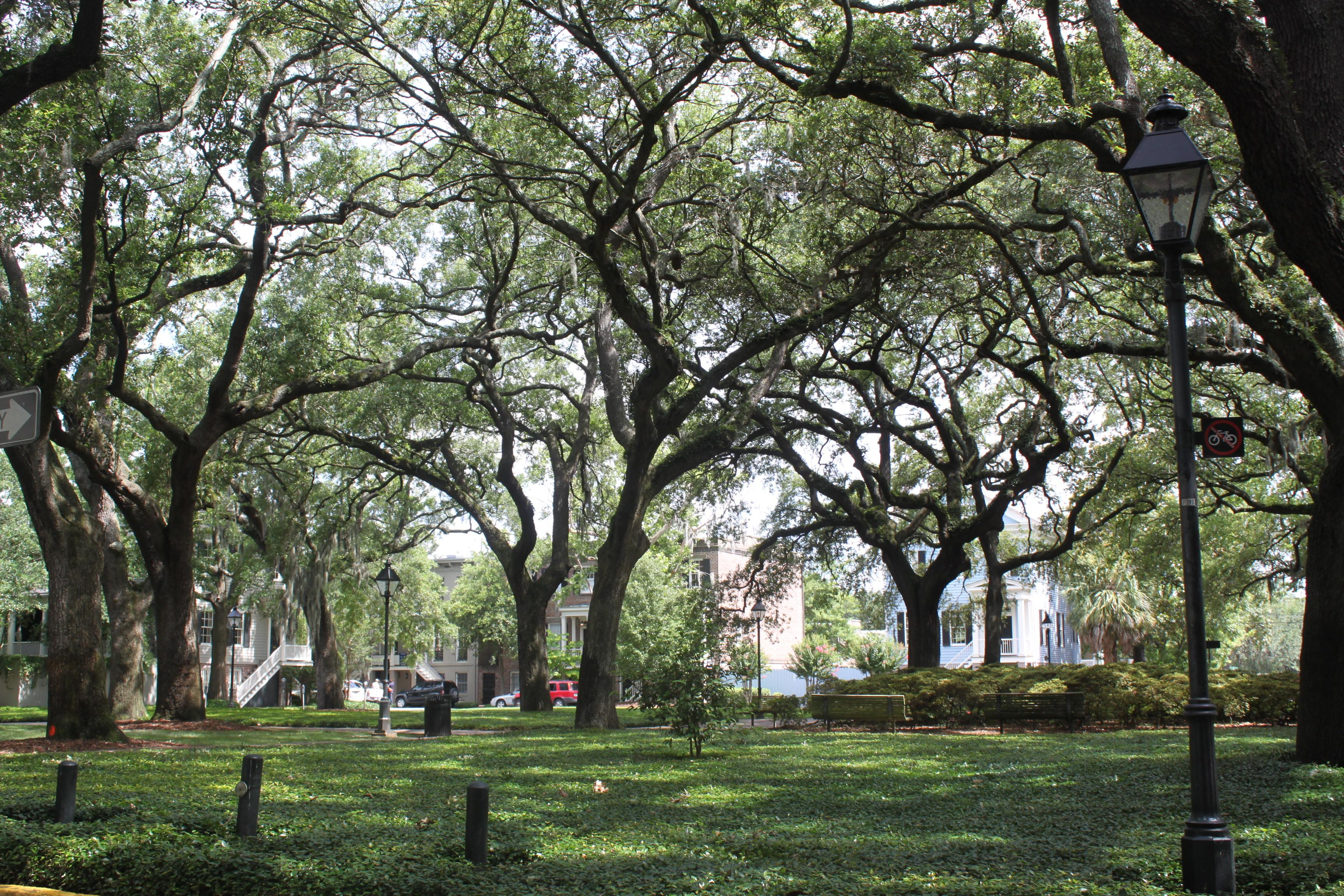 Chatham Square One Of The Quieter Squares In Savannah Is
