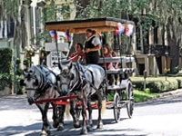 Plantation Carriage Company