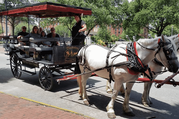 carriage tour