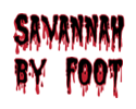 Savannah By Foot | Creepy Crawl Haunted Pub Tour